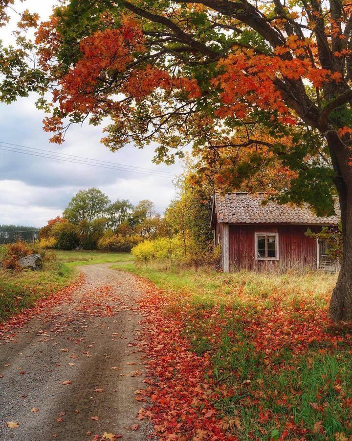 Есен и самотна къща
