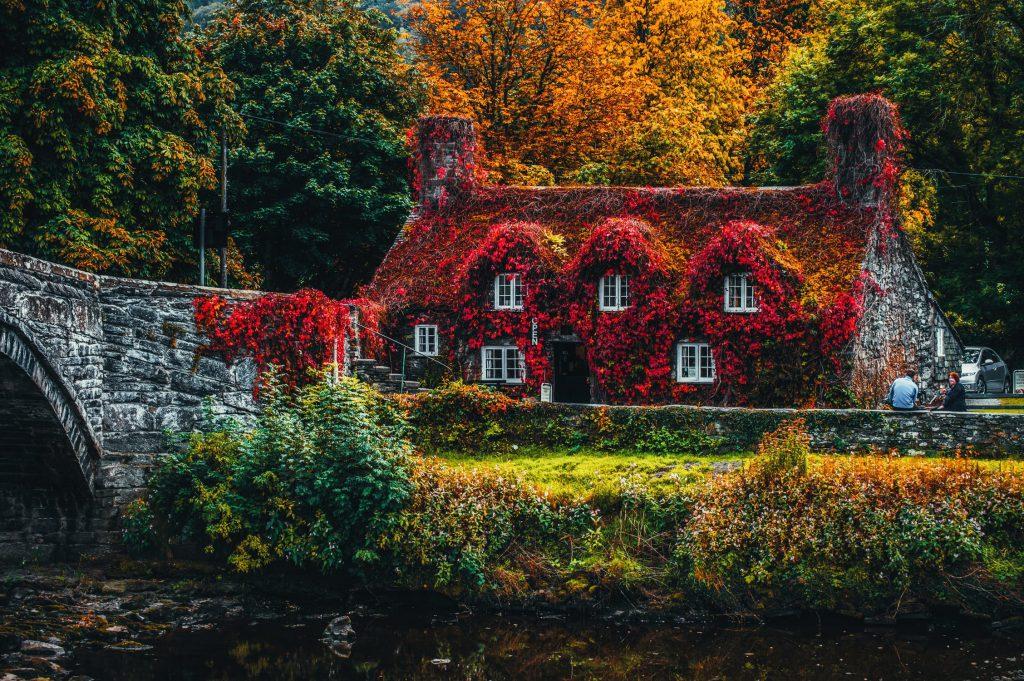 Красива къща в гората