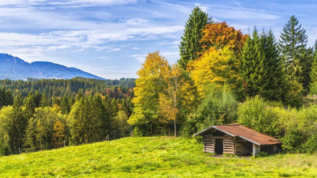 Малка къщичка в гората