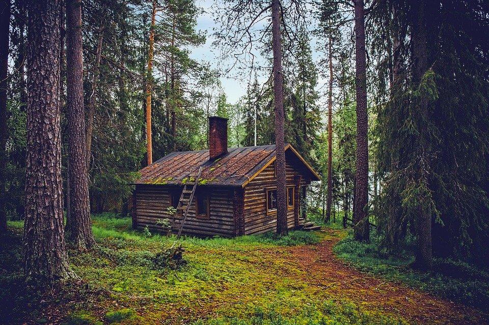 Дървена къща сред дърветата