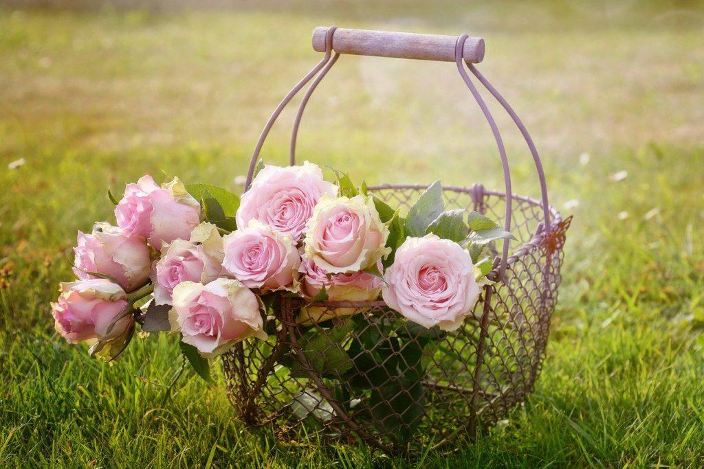 Цветя рози