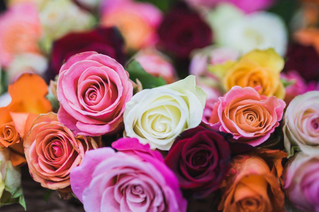 Букет разноцветни рози