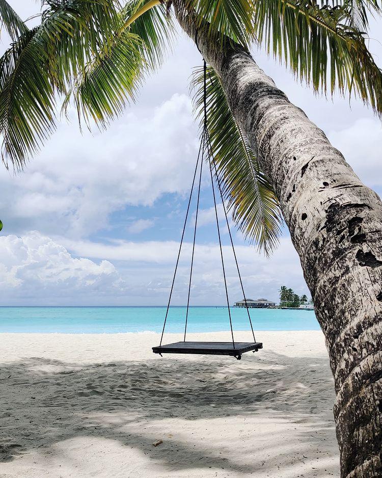 Море и палми