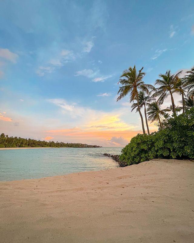 Плаж, палми и море