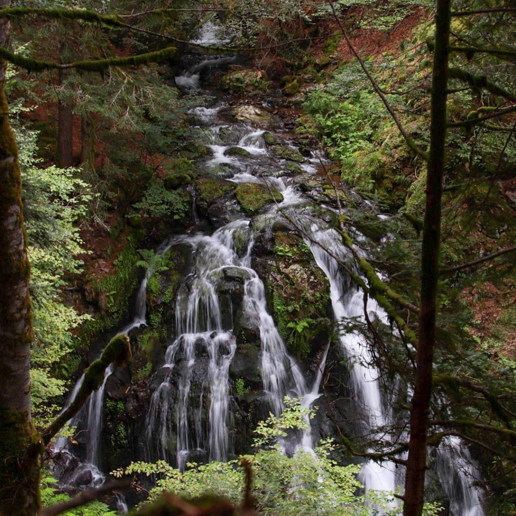 Водопади насред гората
