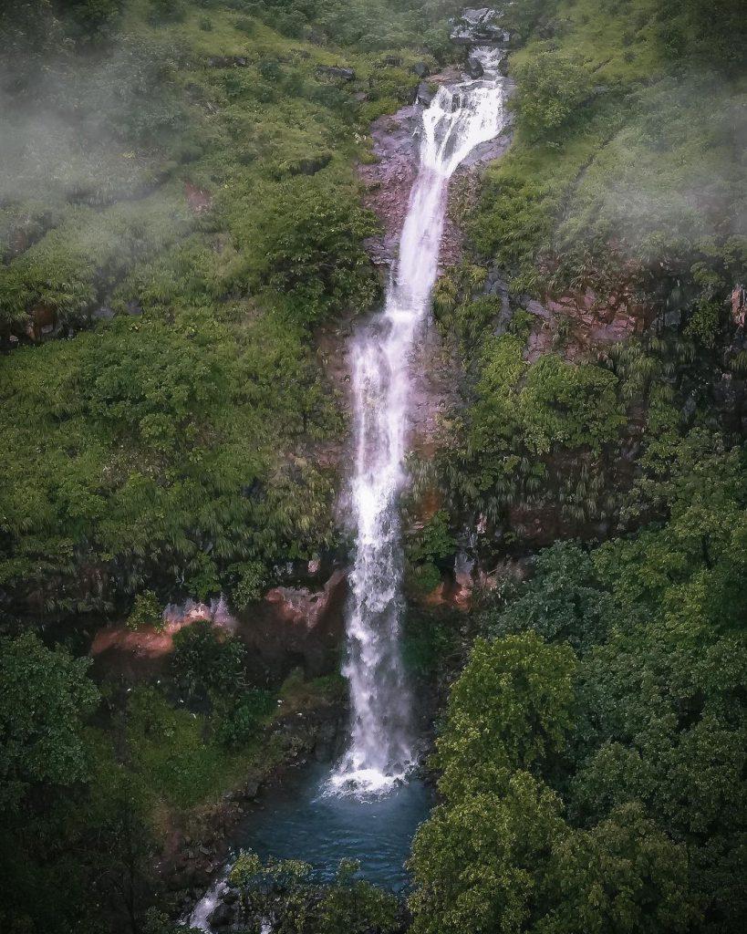Висок водопад сред дървета