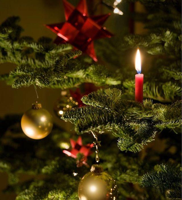 Коледна свещ на елха